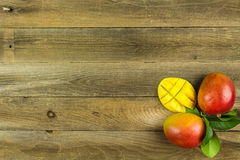 Fresh Mangoes Stock Images