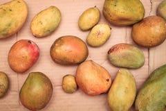 Fresh mangos Stock Photos