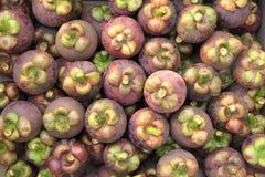 Fresh mangosteen Stock Photos