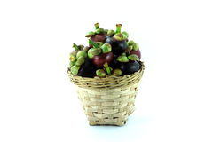 Fresh mangosteen in the basket. Mangosteen is the queen of the tropical fruit Stock Image