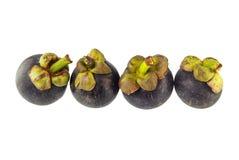 Fresh Mangosteen Fruit Royalty Free Stock Photos