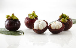 Fresh mangosteen fruit Stock Images