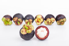 Fresh mangosteen fruit Royalty Free Stock Photos