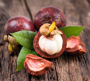 Fresh mangosteen fruit Stock Image