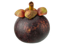 Fresh Mangosteen Royalty Free Stock Images