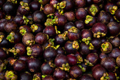 Fresh mangosteen for sale at an outdoor market. Royalty Free Stock Photos