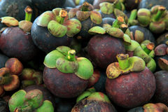 Fresh Mangosteen  for sell in market Royalty Free Stock Photos