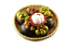 Fresh mangosteen Royalty Free Stock Photos