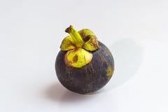 Fresh mangoteen on isolated Royalty Free Stock Images