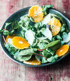 Fresh marche, orange and parmesan salad Royalty Free Stock Photography
