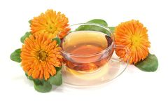 Fresh Marigold tea Stock Photos