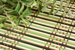 Fresh marjoram herb on a bamboo background Stock Photos