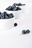 Fresh from the market blueberry line Royalty Free Stock Images