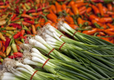 Fresh market chilis and spring onion Royalty Free Stock Photos