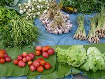 Fresh market in Thailand. Vegetable at the morning market royalty free stock image