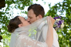 Fresh married couple is kissing each other Stock Photos