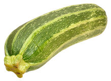 Fresh Marrow Squash Stock Photo
