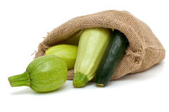 Fresh marrow and zucchini in a burlap bag. Isolated on white background Stock Image