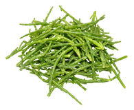Fresh Marsh Samphire Royalty Free Stock Photography