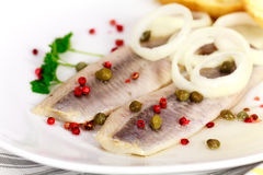 Fresh Matie,Young Herring with Onion , Potato Royalty Free Stock Images