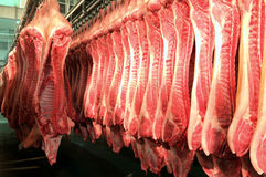Fresh meat in a cold cut factory royalty free stock photography