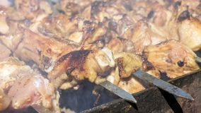 Fresh meat cooked on coals Royalty Free Stock Photos