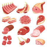 Fresh meat cuts colorful vector collection on white Stock Images