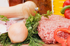 Fresh meat and different components Stock Image