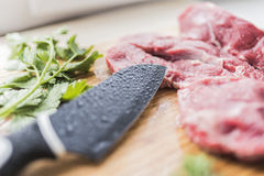 Fresh meat, fresh parsley and a knife Royalty Free Stock Images