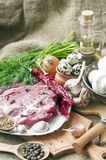 Fresh meat with mushrooms spices , herbs. Stock Photos