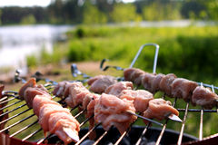 Fresh Meat On The Grill Royalty Free Stock Photos