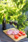 Fresh meat, vegetables and bottle of wine on a picnic outdoors Stock Image