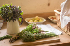 Fresh medical herbs. On the chopping board in the kitchen royalty free stock photo