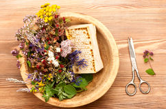 Fresh medicinal  herbs and flowers and honey Stock Image