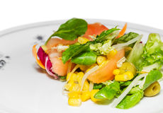 Fresh mediterranean style salad with corn and olives Stock Photography