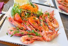 Fresh meditteranean prawns Stock Photos
