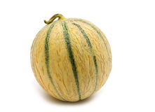 Fresh mellon Royalty Free Stock Photo