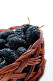 Fresh mellow mulberry Royalty Free Stock Image