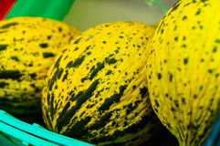 Fresh Melon On a District Bazaar Royalty Free Stock Photo