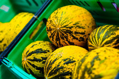 Fresh Melon On a District Bazaar Stock Photography