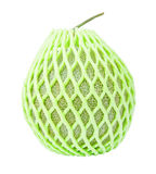 Fresh melon and green foam net Royalty Free Stock Image