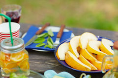 Fresh melon Royalty Free Stock Image