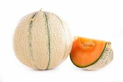 Fresh melon Stock Image