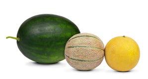 Fresh melons Stock Photo