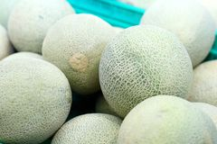 Fresh melons in marketplace Stock Photography
