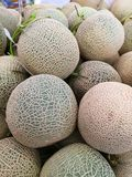 Fresh Melons that is placed on the shelf royalty free stock photo