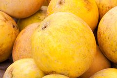 Fresh melons for sale royalty free stock photography