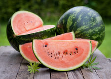 Fresh melons Royalty Free Stock Image