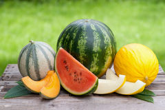 Fresh melons Royalty Free Stock Photos