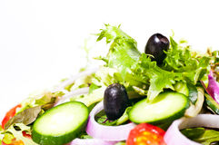 Fresh mesclun salad extreme close up Royalty Free Stock Photos
